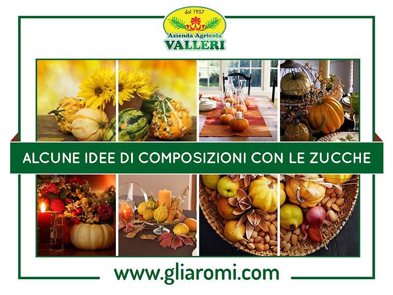 Composizioni zucche ornamentali azienda agricola valleri for Decora la tua casa